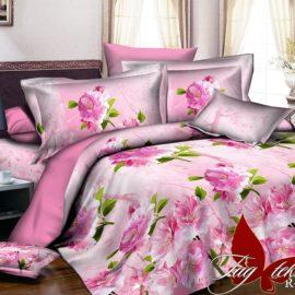 Комплект постельного белья R2039