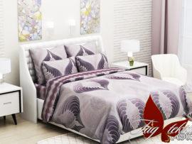 Комплект постельного белья  с компаньоном R6903